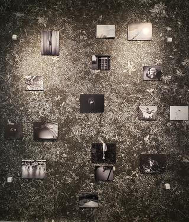 画像: 岩波友紀写真展「Blue Persimmons」が銀座ニコンサロンにて開催中。9月3日(火)まで。