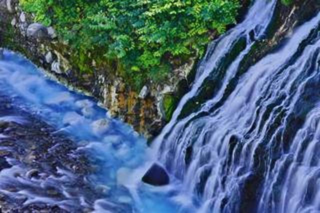 画像: 自然写真家・高橋真澄がソニーα7R IVで 北海道の雄大な自然を撮る!