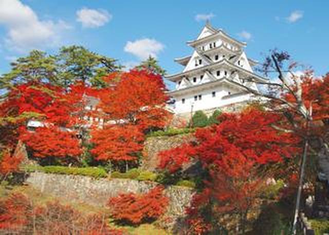 画像: 惚れ惚れとする絶景の数々! この秋は「郡上八幡」での撮影を楽しんではいかがでしょう!