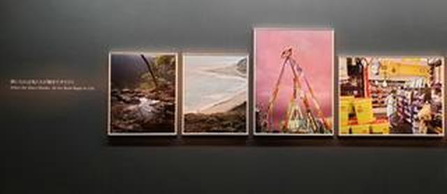 画像: 七咲友梨写真展「朝になれば鳥たちが騒ぎだすだろう」がキヤノンギャラリー銀座にて開催中!10月16日(水)まで。