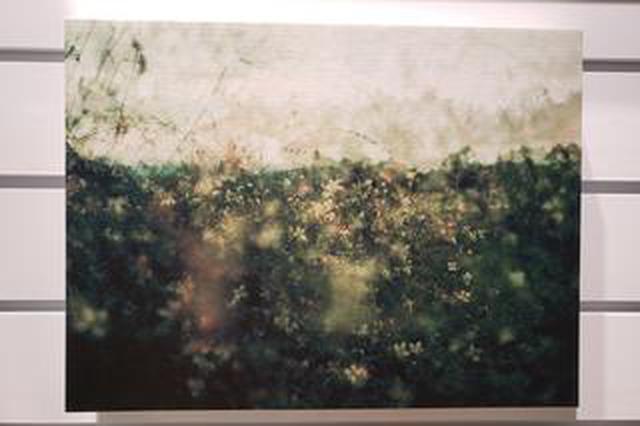 画像: 市ノ川倫子写真展「しのぶれど」が新宿のオリンパスプラザ東京にて開催中!1月22日(水)まで。