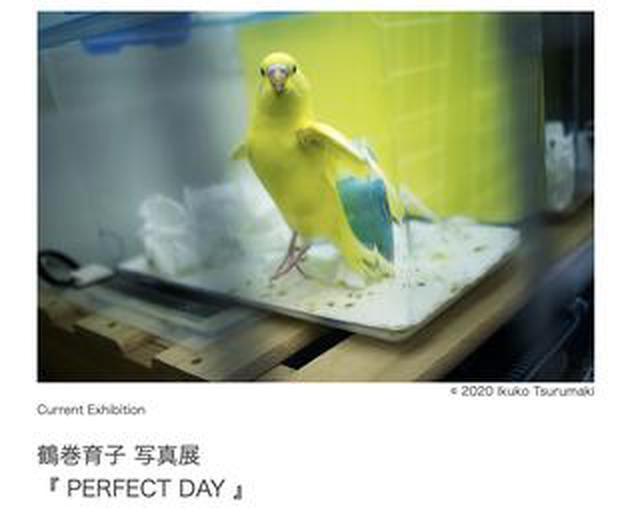 画像: 鶴巻育子写真展『PERFECT DAY』がJam Photo Gallery(東京・目黒)で本日(3/5)より開催。3/15(日)まで。