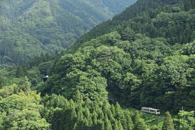 画像: ここで出会える、撮影できる! 鉄道撮影地ガイド「珠玉の絶景」Part8(西日本編)