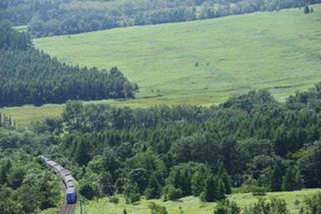 画像: ここで出会える、撮影できる! 鉄道撮影地ガイド「珠玉の絶景」(北海道編)Part14