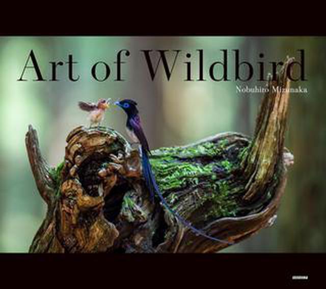 画像: 野鳥写真家・水中信浩さんの初写真集「Art of Wildbird」が 好評発売中!