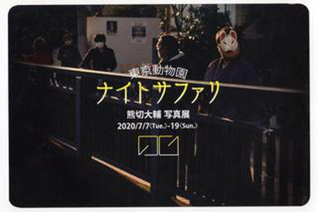 画像: 熊切大輔写真展 「東京動物園 ナイトサファリ」が7月7日より開催