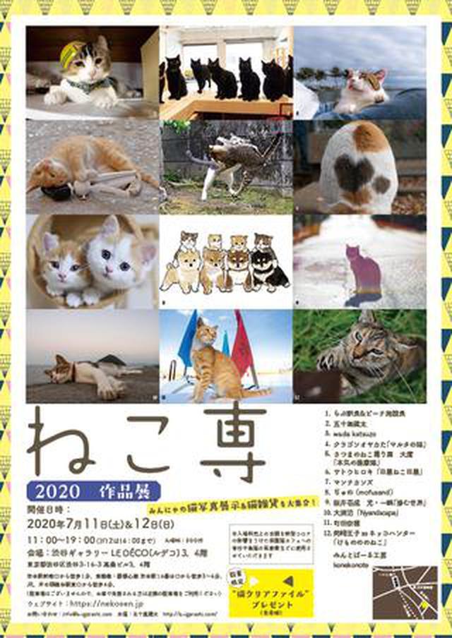 画像: 入場料全額がチャリティになる猫イベント「ねこ専」が 7月11日(土)、12日(日)渋谷ギャラリールデコで開催決定 !