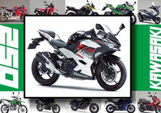 画像: カワサキ「Ninja 250/KRT Edition」いま日本で買える最新250ccモデルはコレだ!【最新250cc大図鑑 Vol.022】-2020年版-