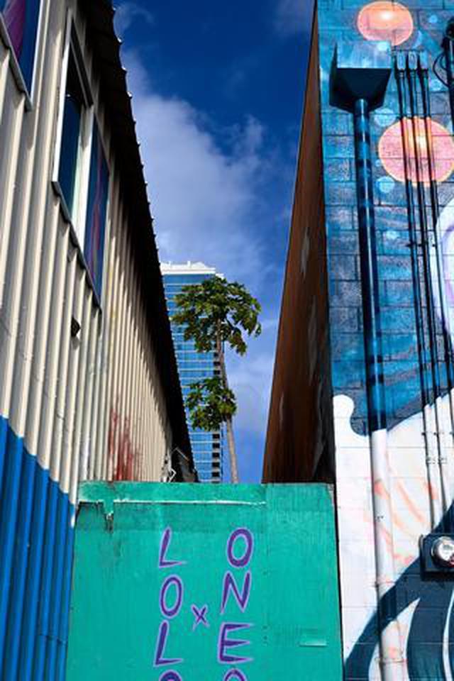 画像: 佐藤倫子写真展 『 no rain no rainbow 』がピクトリコショップ&ギャラリー表参道 Gallery1.2で9月9日(水)~13日(日)開催!