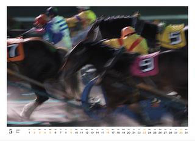 画像: カメラマン2021カレンダーのご紹介Part1 山岸伸さん「輓馬」