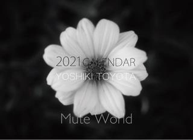 画像: カメラマン2021カレンダーのご紹介Part13 豊田慶記さん「Mute World」