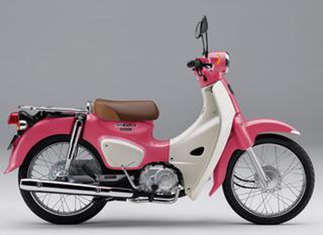 画像: ホンダ「スーパーカブ110」【1分で読める 2021年に新車で購入可能なバイク紹介】