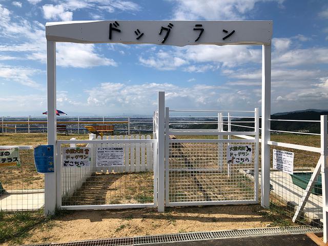 画像: ワールド牧場|大阪府南部のふれあい観光牧場