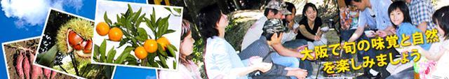画像: やまびこ園|大阪 富田林でバーベキュー、みかん狩り、いもほり、栗ひろい
