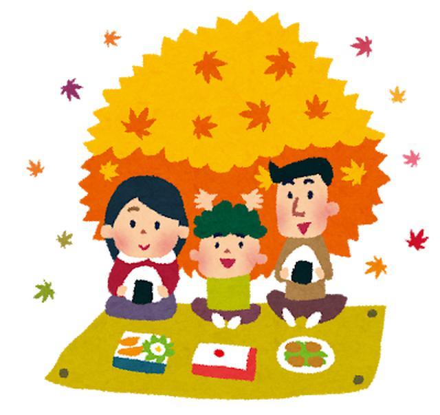 画像1: 11月18日水曜日 阪神高速maruごとハイウェイ!