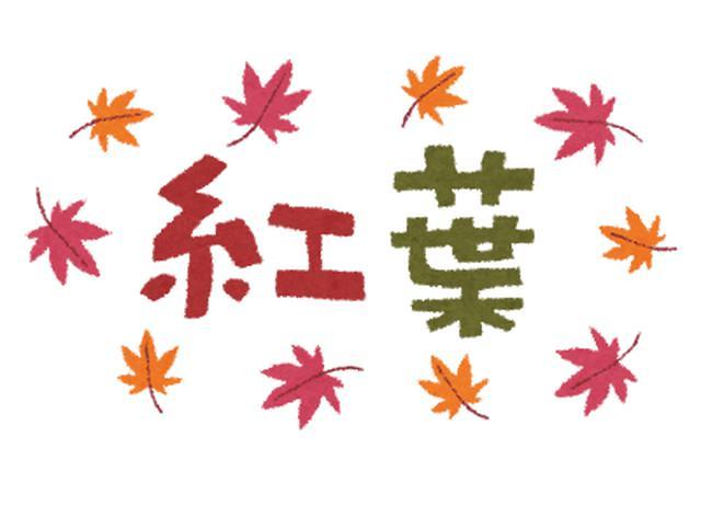 画像1: 11月25日水曜日 阪神高速maruごとハイウェイ!