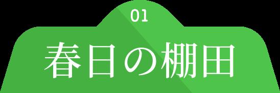 01 春日の棚田