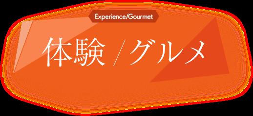 体験/グルメ