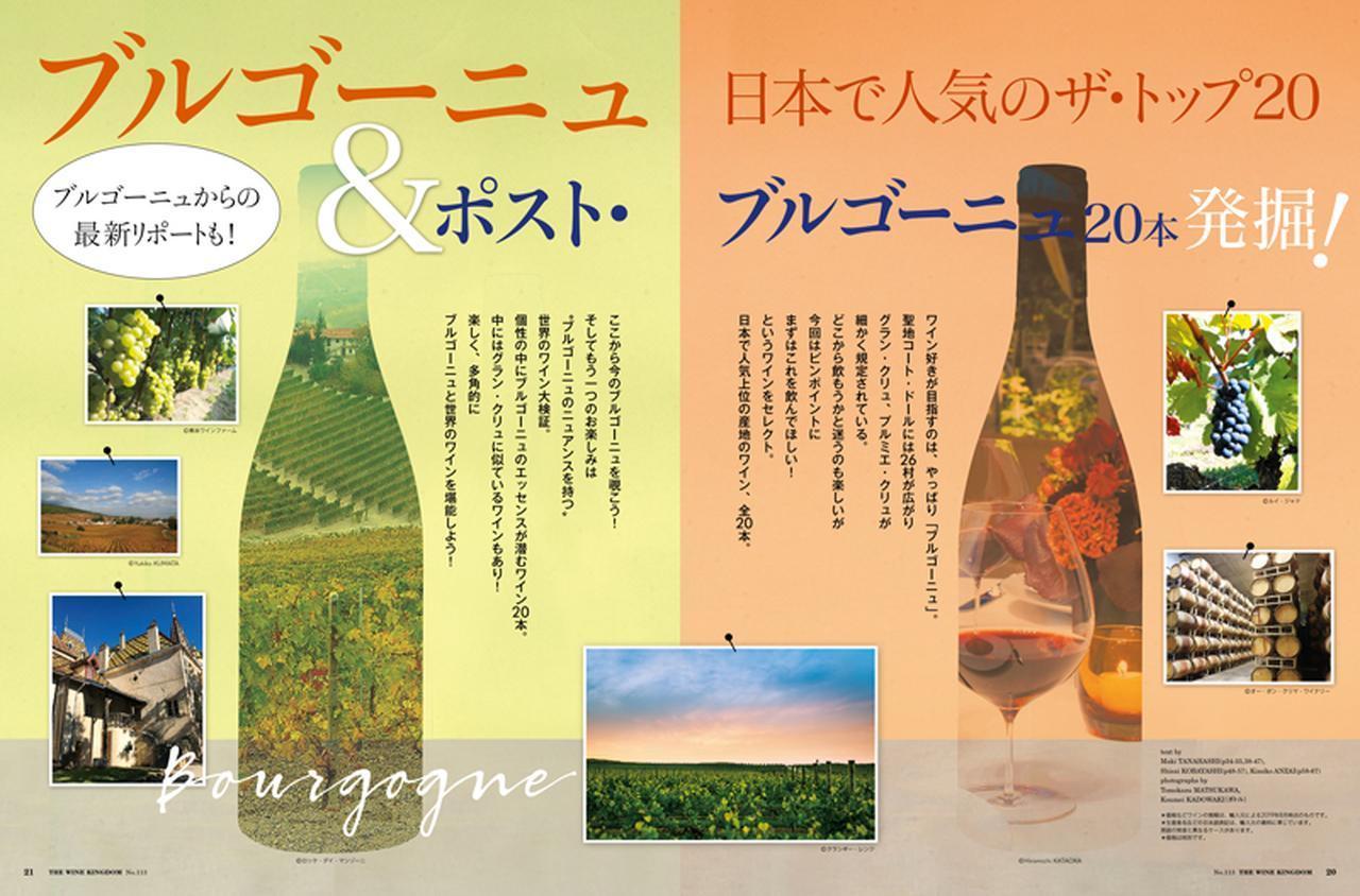 """画像: 【特集】ブルゴーニュ 日本で人気のザ・トップ20&ポスト・ブルゴーニュを発掘! ワイン好きが目指すのは、やっぱり「ブルゴーニュ」。全26村、どれを飲もうか迷うのも楽しいですが、今回はピンポイントに、まずはこれを飲んでほしい!ワイン20本をセレクトしました。 日本で人気のTOP9産地のワインからの20本。ここから今のブルゴーニュを覗こう! そしてもう一つのお楽しみは""""ブルゴーニュのニュアンスを持つ""""世界のワイン大検証。 個性の中にブルゴーニュのエッセンスが潜むワイン20本。時には""""グラン・クリュにそっくり""""のワインもあり!"""