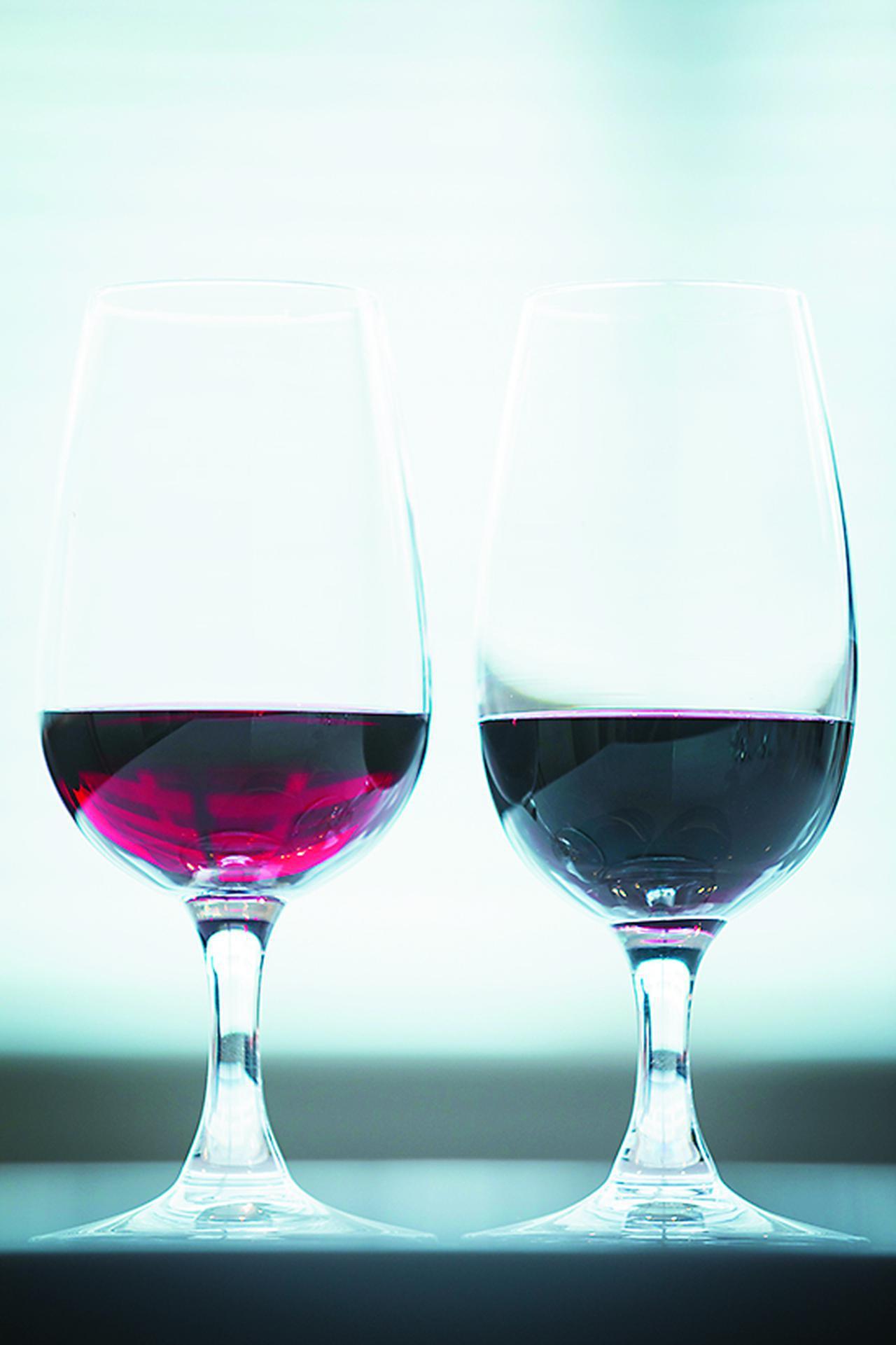 画像: 黒ブドウのサペラヴィも造りによって色合いや味わいはさまざまな