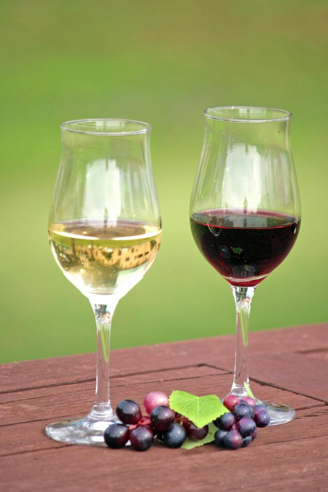 画像: ボジョレー・ヌーヴォーとともに、白ワインの新酒「マコン・ヴィラージュ・ヌーヴォー」が一緒に店頭に並ぶことも多い