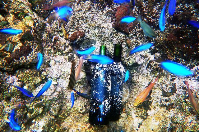 画像: ㈱Enjoyは、海底熟成酒『VOYAGE』を昨年に引き続き、 12月17日、西伊豆の海底へ設置