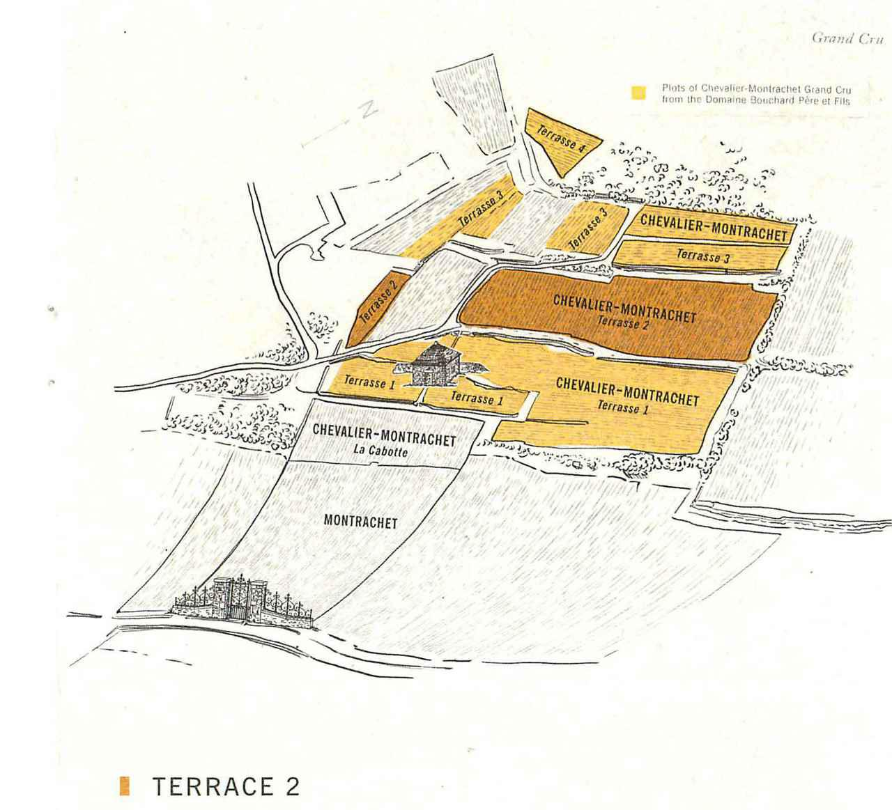 画像: シュヴァリエ・モンラッシェの四つのテラスのうち、2番目(濃い色の部分)が最もバランスがいい