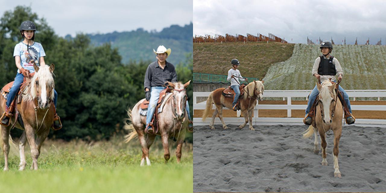 画像: ウェスタン乗馬体験