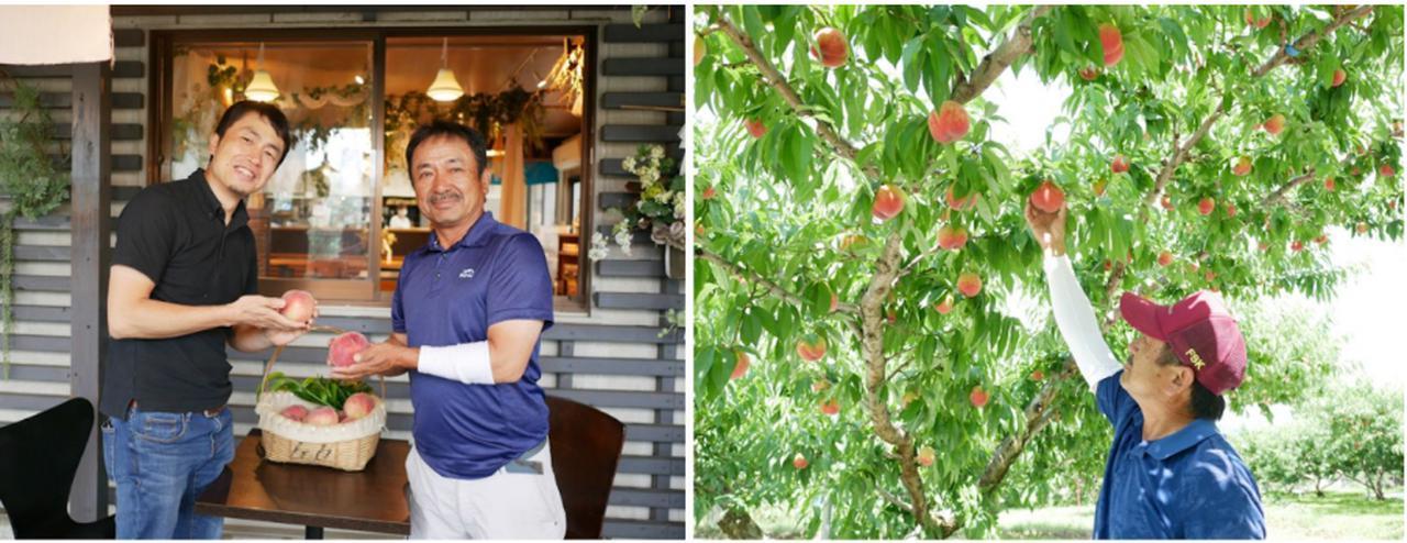 画像: 左:Far Yeast Brewing代表 山田氏(左)とピーチ専科ヤマシタ代表の山下氏(右) 右:ピーチ専科ヤマシタの桃農園