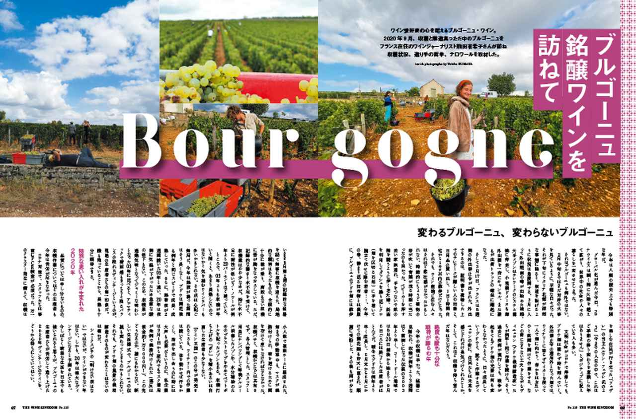 画像4: 『ワイン王国 119号』銘醸が造る ちょっと贅沢なおうち飲みブルゴーニュ/日本ワインをとことん楽しむ!/ワイン好きにぜひ飲んでいただきたい日本酒