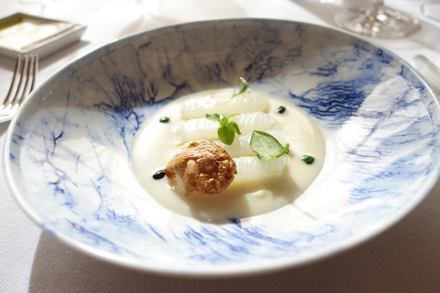 画像: アオリイカ 菊芋のピューレ