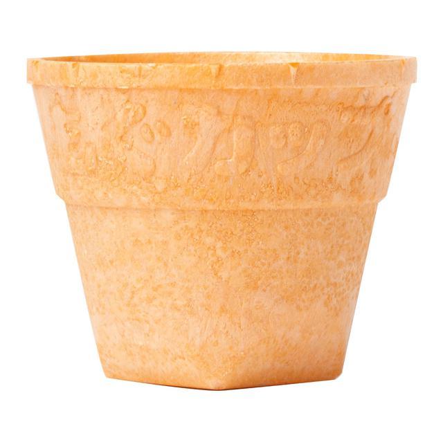 画像: 食べられる「もぐカップ」で楽しみながらプラスチック削減。アサヒビールがフードメニューと合わせて試験運用中!