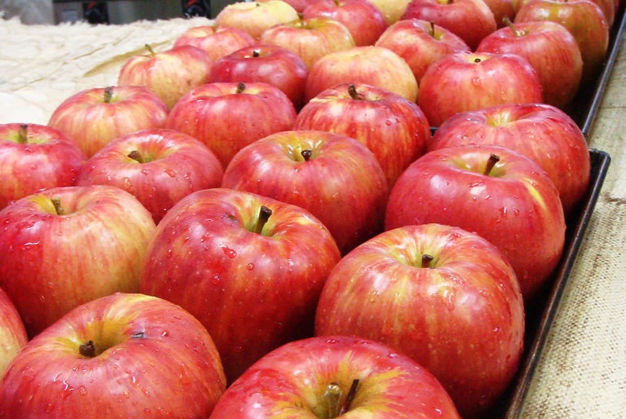 画像: りんごは長野県伊那市産のはねだし品を軽く焼いてから使う