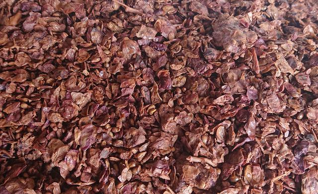 画像: ワイン醸造後の果皮