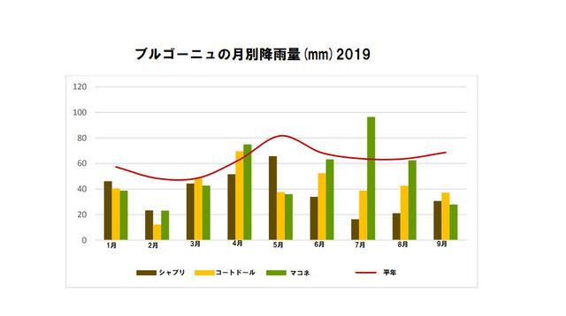 画像3: 2019年の夏は猛暑で降雨も少なかったが、酸が十分にありフレッシュでバランスの取れた味わい