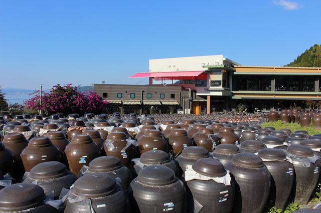 画像: 壷畑は自由に散策することができる。見学ツアーも開催している