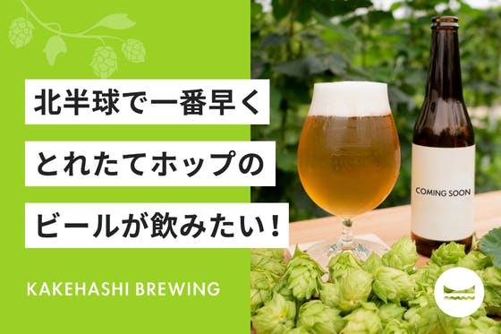 画像: 北半球で一番早くとれたてホップのビールが飲みたい!京都与謝野かけはしブルーイング
