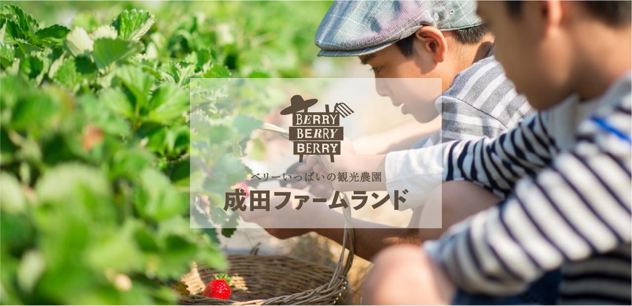 画像: ベリーいっぱいの観光農園「成田ファームランド」