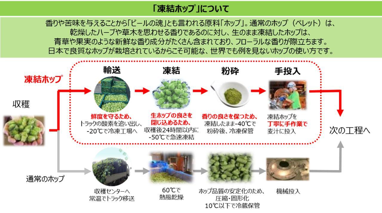 画像: 100年以上前からホップの国内試験栽培を開始し、日本産ホップの生産地と共にビールの魂であるホップにこだわってきたキリンビール