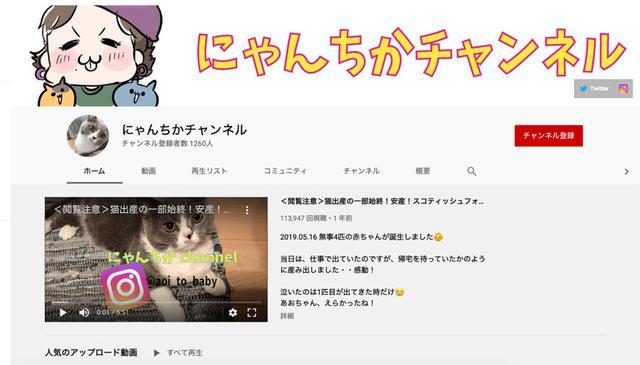画像: 2019年からスタートした、愛猫を紹介するYouTubeチャンネル「 にゃんちかチャンネル 」。このほか、林さん自身のことを発信する「 林知佳占う人材(ちかさんチャンネル) 」を運営している。 ※この画像はスクリーンショットです