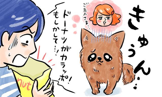 画像18: ウッカリくんとシッカリさん#3 愛する家族の一員だから……。ペット保険のメリットとは?
