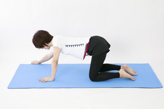 画像18: のがちゃんねる式・スタイルアップ筋トレ#3 毎日3分で効果実感!「二の腕」のトレーニング