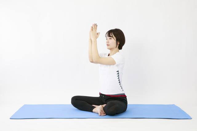 画像7: のがちゃんねる式・スタイルアップ筋トレ#3 毎日3分で効果実感!「二の腕」のトレーニング