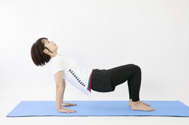 画像12: のがちゃんねる式・スタイルアップ筋トレ#3 毎日3分で効果実感!「二の腕」のトレーニング