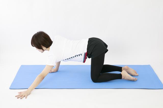 画像20: のがちゃんねる式・スタイルアップ筋トレ#3 毎日3分で効果実感!「二の腕」のトレーニング