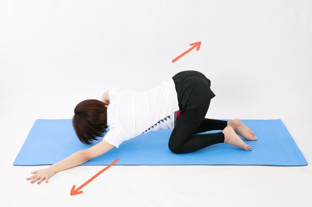 画像21: のがちゃんねる式・スタイルアップ筋トレ#3 毎日3分で効果実感!「二の腕」のトレーニング