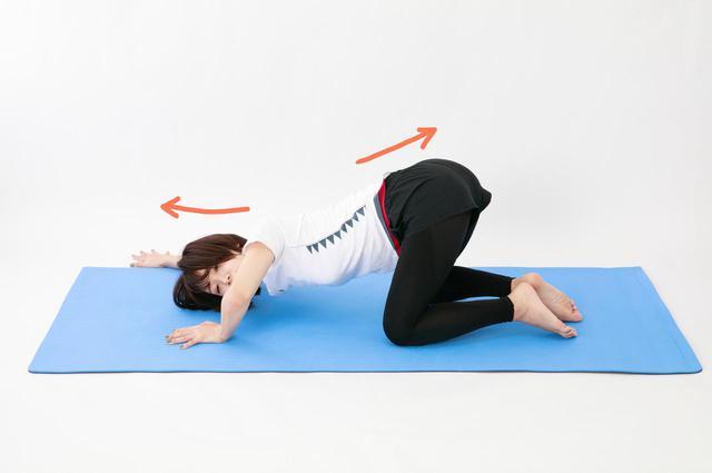 画像19: のがちゃんねる式・スタイルアップ筋トレ#3 毎日3分で効果実感!「二の腕」のトレーニング