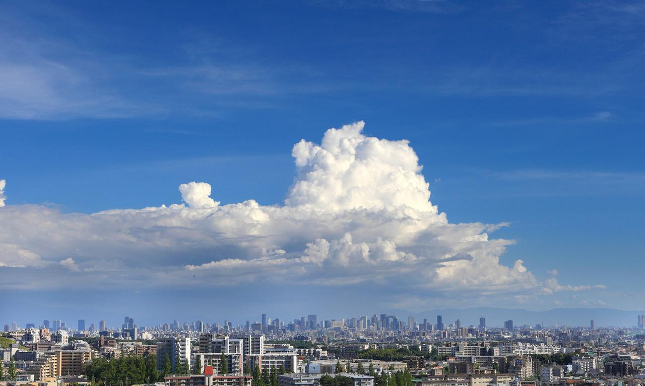 画像: 画像:iStock.com/EarthScapeImageGraphy