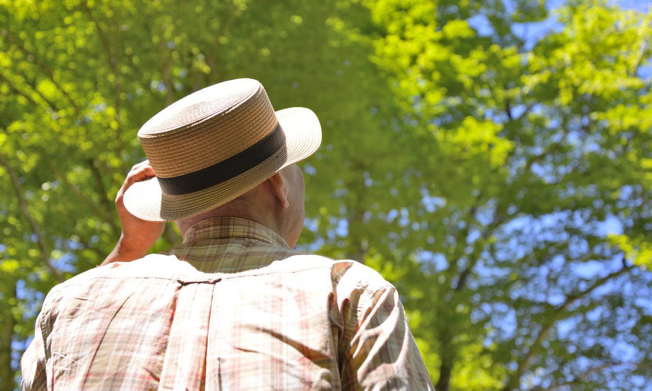 画像: 画像:iStock.com/ sakai000