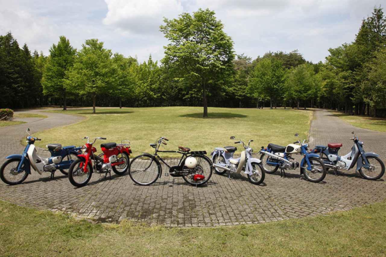 画像: 6台のカブが用意された。右からスーパーカブC100、スポーツカブC110、ポートカブC240、カブ号F型、90トレイルCT200、スーパーカブC50